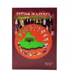 የሳጥናአል ጐል ኢትዮጵያ ! (Amharic Edition ) በፋሰሃ ያዜ