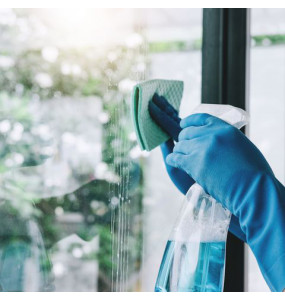 RHEMA Glass Cleaner
