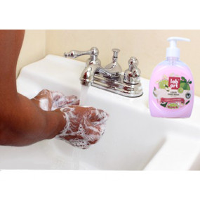 Lab Art Liquid Hand wash (450ml)