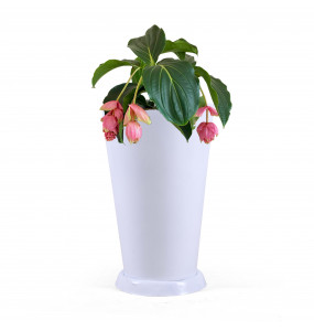 Cone Shape White Plastic Flower Pot