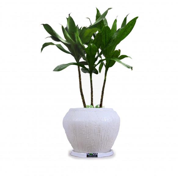 Ball Shape Plastic Large Flower Pot ( 40 cm*1.38cm)