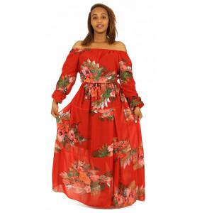 Aklilu_ Women's  Flora print Long sleeve  Dress
