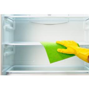 Kury Refrigerator Cleaner (250ml)