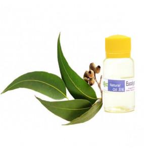 Ecopia 100%Organic Eucalyptus Oil (30ml)